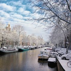 illusionwanderer:  Amsterdam If winter comes, can spring be far...