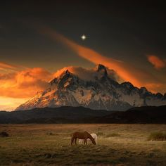 Amazing Nature Landscapes by Andy Lee #inspiration #photography