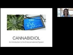 (2) Benefits of CBD and Endocannabinoid System - YouTube
