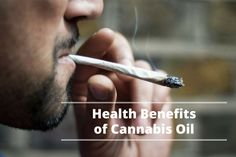 Cannabis Through Its History
