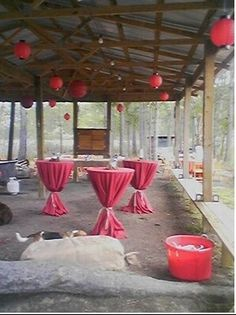 party location! Awendaw Vacation Rental - VRBO 57440 - 2 BR Charleston Area Cabin in SC, Kayak & Cabin! Total Lowcountry Living!
