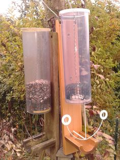 Mésanges et autres oiseaux du jardin : à vous de trouver comment il faut faire pour obtenir une ou deux graines de tournesol !