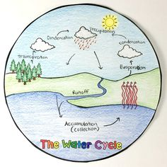 Science Drawings Water Cycle - The Water Cycle Circle Book Water Cycle Craft, Water Cycle For Kids, Water Cycle Model, Water Cycle Project, Water Cycle Activities, Science Activities, Weather Activities, Science Experiments, Weather Crafts