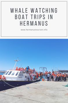 Book your whale watching trip and experience the gentle giants play in Walker Bay #whales #boatcruises #newharbour #whalewatching #hermanus #westerncape #southafrica