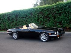 MauiCat 1991 Jaguar XJ Series 11153568