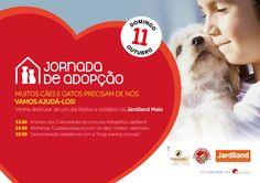 Jornada de Adopção, Workshop e Demonstração de obediência