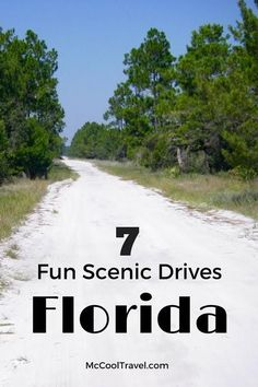 Scenic drives in Florida include gorgeous ocean views, one of the world's best scenic drives, history, horse country, fascinating landscapes, and hills. (2016)  Drive safely though! 1safedriver.com
