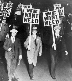 We want weed.