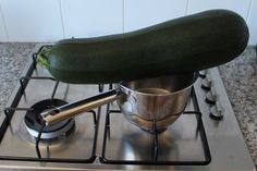 I probably should have picked this zucchini a little earlier. I left our veggie patch unattended for four weeks, and ended up with this impractically large specimen.