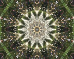 PIF Mandala Kaleidoscope made from spider web by LeesWhimsy, $0.20
