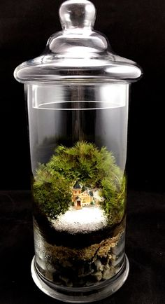 Church Christmas Terrarium by TerraSphereTerrarium on Etsy
