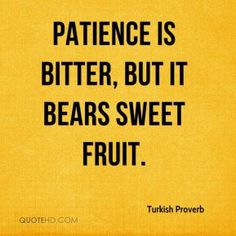 Turkish Proverb Quotes - Patience is bitter, but it bears sweet fruit. Hug Quotes, Wise Quotes, Words Quotes, Wise Words, Inspirational Quotes, Sayings, Liking Someone Quotes, Sweet Life Quotes, Real Life Quotes