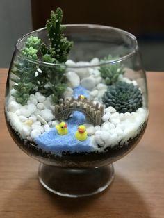 """I success make my terrarium 1st time  """" idea terrarium """""""