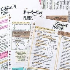 Image about motivation in 📚~School and Organisation~✏️ by Anid Class Notes, School Notes, Pretty Notes, Good Notes, Lettering, Studyblr Notes, Planning School, Study Organization, School Study Tips