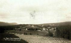 Hedmark fylke Østerdalen Stor-Elvdal kommune KOPPANG. 1917 Utg Carl Normann, Hamar