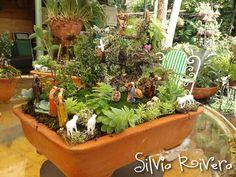 Miniature Nativities by Artist Silvia Rivera Christmas Jesus, Christmas Nativity, Christmas Holidays, Xmas, Mini Fairy Garden, Fairy Gardens, Nativity Sets, Cute Fairy, Abundant Life