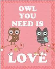 Afbeeldingsresultaat voor owl you need is love