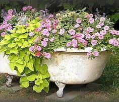 Love the old tub as a planter