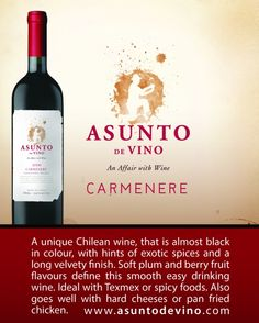 Product Name: Asunto de Vino Carmenere    Appelation: Central Valley    Variety: Wine    Country of origin: Chile