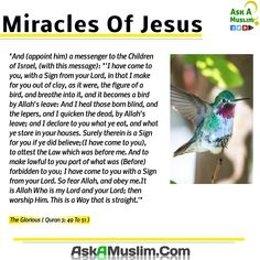 Miracle of Jesus in the Quran.