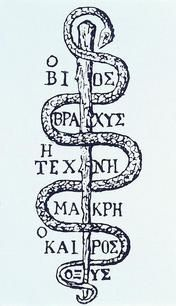 "The Rod of Aesclepius has been used as a symbol for medicine and pharmacy. Asclepius was god of medical art in antiquity. The rod is entwined by a serpent, at its ability to molt believed to symbolize the life-renewing power. Snakes were sacred animals held in captivity at hospitals associated with temples dedicated to Asclepius.  The Greek text renders the first aphorism of the medical art father Hippocrates. Danish translation: ""livet er kort, kunsten lang, det rette øjeblik hastigt…"