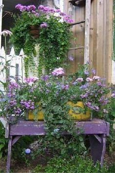Pretty purples.... love purple!