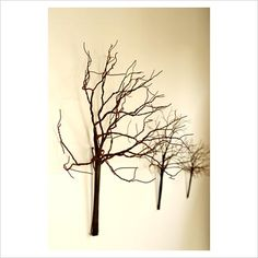 branches, repetition