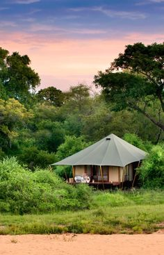 Tented accommodation at Ngala Tented Camp