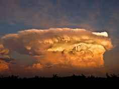 Undo the Dry Spell: Storms, Weather and Clouds 1 The Anvil Cloud