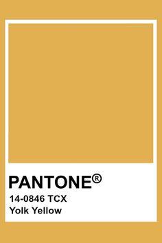 Pantone Colour Palettes, Paint Color Palettes, Colour Pallete, Colour Schemes, Pantone Color, Pantone Swatches, Color Swatches, Pantone Tcx, Yellow Pantone