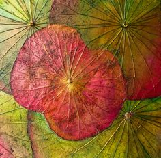 Lotus leaves painting is 10% skill and 90% picking colors. Let us show you how at our workshops.