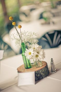 wood rounds w/glass bottle vases
