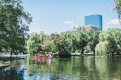 boston public garden photograph swan boats by HelenMPhotography