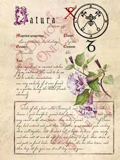 Datura-Page (a_granger) Tags: