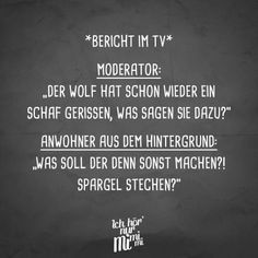 "Visual Statements® Bericht im TV: Moderator: ""Der Retro Humor, Humor Videos, Funny Images, Funny Pictures, Say Say Say, Epic Texts, Joy Of Life, Love Quotes For Him, Geek Humor"