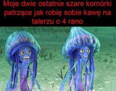 Polish Memes, Funny Mems, Reaction Pictures, Best Memes, Haha, Text Posts, Humor, Funny Memes, Ha Ha