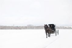 Winter in Upstate New York | What to do in Upstate New York | Upstate New York Photography | Crystal Bolin Photography | Places to see in upstate New York in the Winter | Amish Country