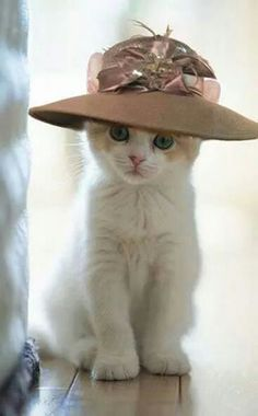 Lovely chapeau