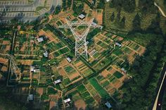 Jardins ouvriers dans les Yvelines, France. © Yann Arthus-Bertrand