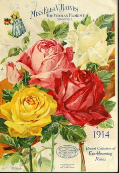 heaveninawildflower:  Catalogue cover (1914). 'Miss Ella V. Baines. The Woman Florist'. Springfield, Ohio. Bouquet Collection of Everblooming Roses. http://archive.org/search.php?query=seed%20cataloguepage=1