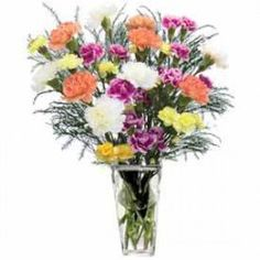 Classic Carnations Do you know someone who adores Carnations? Then you are in luck! Your selection includes 5 Orange Carnations 5 White Carnations 3 Yellow Mini Carnations and 3 Purple Mini Carnations accented with Tree Fern. Online Flower Shop, Send Flowers Online, Mini Carnations, Happy Birthday Flower, White Carnation, Online Florist, Rose Bouquet
