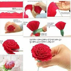 DIY Beautiful Crepe Paper Carnation, DIY Lovely Crepe Paper Carnation Crepe paper flowers seem like pure flowers however last more and received't wilt or droop.Crepe paper flowers look like natural flowers but last longer and won't wilt or droop. Tissue Flowers, Paper Flowers Diy, Handmade Flowers, Felt Flowers, Flower Crafts, Fabric Flowers, Flower Diy, Paper Flower Garlands, Paper Pom Poms