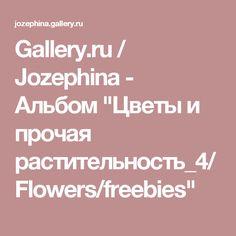 """Gallery.ru / Jozephina - Альбом """"Цветы и прочая растительность_4/Flowers/freebies"""""""