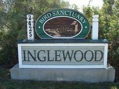 Inglewood Bird Santurary Stuff To Do, Things To Do, Calgary, Bird, Fun, Things To Make, Birds, Hilarious