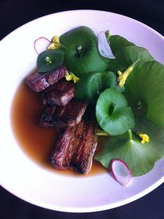 Pork Belly, Miner's Lettuce, Wood Sorrel, Radish, Smoky Pork and Green Garlic Broth http://twitpic.com/8p9cyg