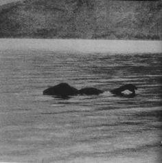 Věříte v Loch Nessku?