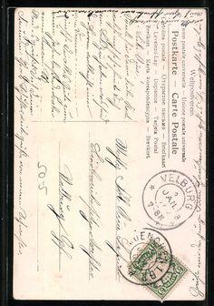 old postcard: back side: AK Ein Reh auf einer verschneiten Waldlichtung