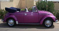 1968 VW Bug Convertible
