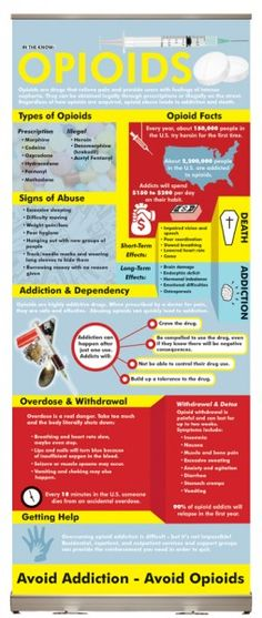 In the Know: Opioids Presentation Display - This display conveys the facts and dangers behind opioid abuse, including information about addiction, overdose, and withdrawal.