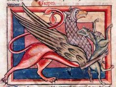Medieval Bestiary : Griffin